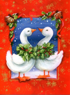 Christmas Geese Christmas Cards - Pack of 10