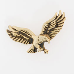 Landing Eagle Lapel Pin