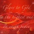 Glory to God in the Highest Christmas Cards - Pack of 10