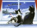 Cats on Christmas Eve Christmas Cards - Pack of 10