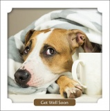 Dog Unwell Under Blanket, Get Well Soon Card