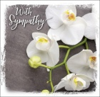 With Sympathy - Greetings Card