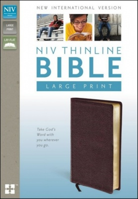 NIV Thinline Large Print Bible