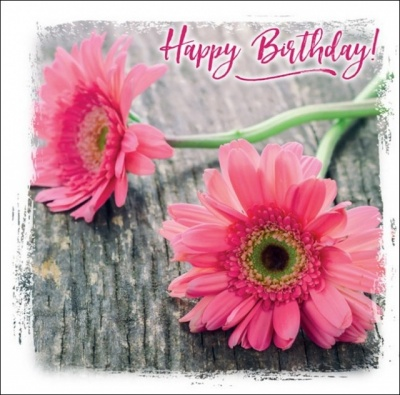 Happy Birthday - Greetings Card (Pink Daisy)