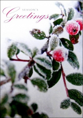 Red Berry Christmas Cards - Pack of 5
